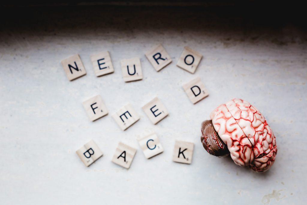 """Scrabble-Steine zeigen """"Neurofeedback"""", daneben ein Gehirn-Modell"""